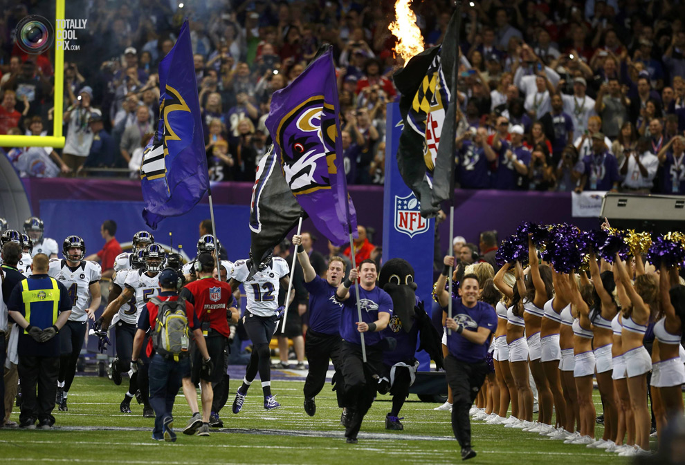 Tony: Baltimore Ravens Stuntman and Science Communicator